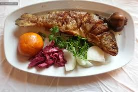 غذای ماهی قزل آلا