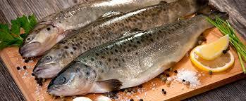 ماهی قزل آلا بسته بندی