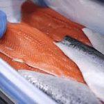 ماهی سالمون اصل