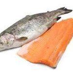 فروشندگان ماهی قزل آلا