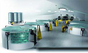 مرکز فروش تجهیزات پرورش ماهی